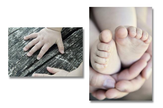 Detailaufnahmen eignen sich zum Beispiel gut für ein Fotobuch. Foto: Melanie Biesenbach / Menschenskinder