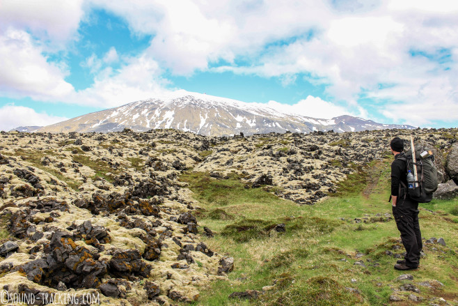 Island Fotoreise - Lavafeld am Snæfellsjökull